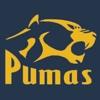 Pima Partnership Academy