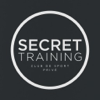 Panthea Derakhshi - Secret Training artwork