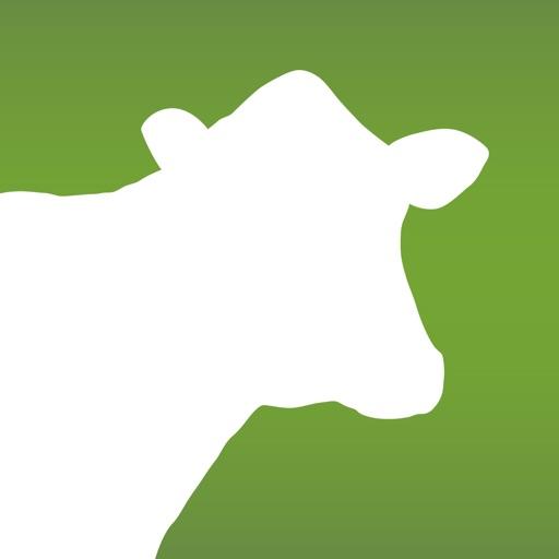 Dairy Health Check iOS App