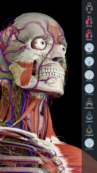 Essential Anatomy 5 Screenshots