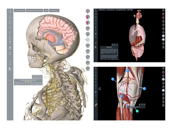 Essential Anatomy 5 IPA Cracked for iOS Free Download