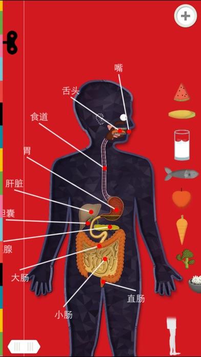 人体探秘 截图1