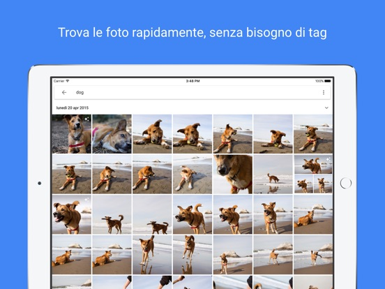 Google Foto Screenshot