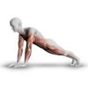 Plank - 30 Days of Challenge for Killer Body