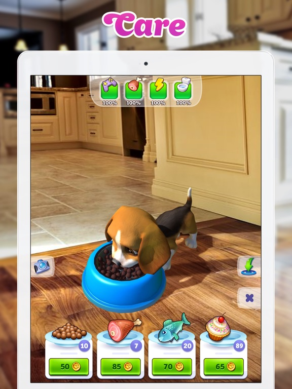 Pockepet: AR Puppy Screenshots