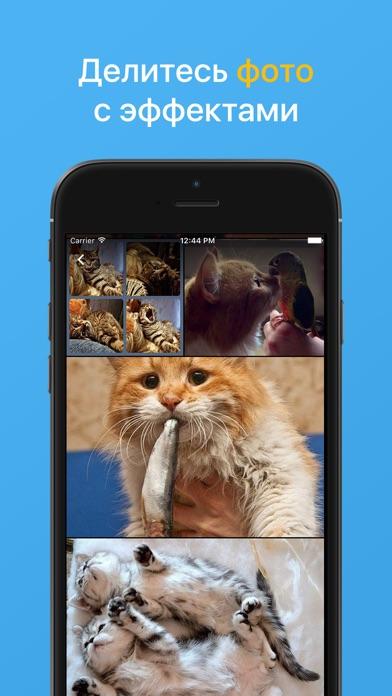Мой Мир: фото, игры, чат, юмор Скриншоты3