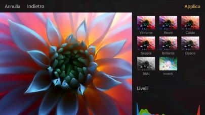 Screenshot of Pixelmator2