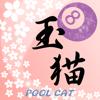 POOL CAT