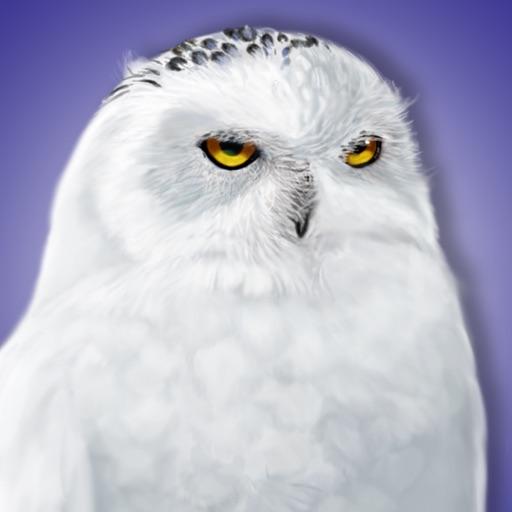 iBird Canada Guide to Birds iOS App