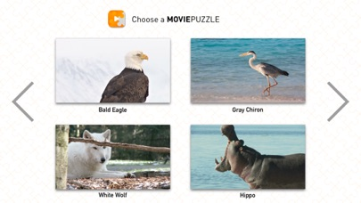 MoviePuzzles – Wild Animals screenshot 2