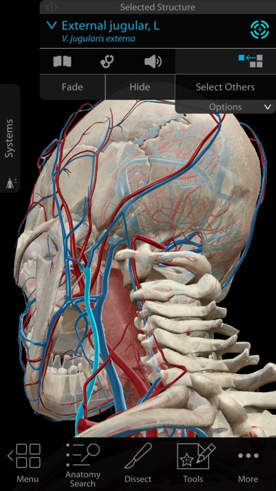 Human Anatomy Atlas 2018 Ipa Cracked For Ios Free Download