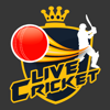CrickHub: Live Cricket Scores and News