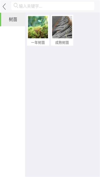 中国树苗网 screenshot 2