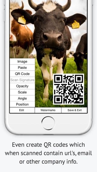 iPhone Screenshot 8