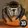 House Spider Survival Simulator 3D