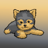 Steven Brekalo - Yorkie Emojis For Dog lovers  artwork