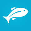 Fishbox - #1 Fishing App Icon