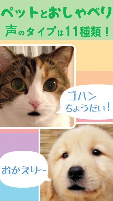 おしゃべりペットとあそぼ!- 写真がしゃべ... screenshot1