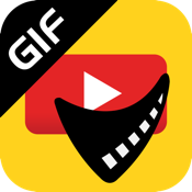 Video GIF Maker AnyMP4