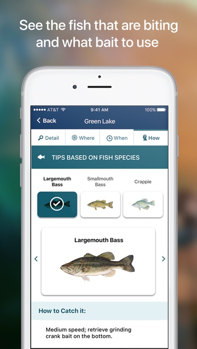 Netfish fishing forecast app on the app store for Fishing weather app