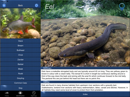 App shopper fish id freshwater fish uk reference for Fish identification apps