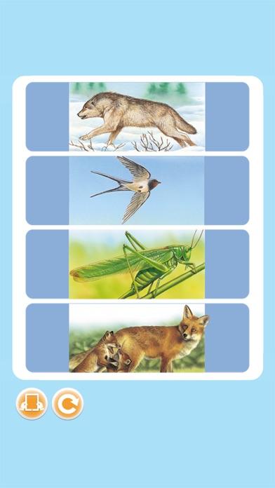 Imagerie animaux interactiveCapture d'écran de 3