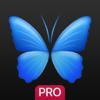 Everpix Pro - Backgrounds