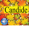 Candide ou l'Optimisme (Lite)