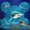 Shark.io : Multiplayer simulator game - World of respeck hungry fish