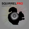 REAL Squirrel Calls and Squirrel Sounds for Bird Hunting! -- (ad free) BLUETOOTH COMPATIBLE