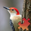 Woodpeckers Puzzles