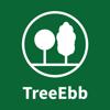 Ebben TreeEbb