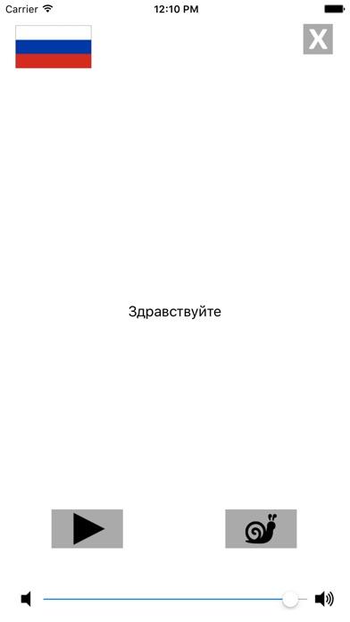 Русско / Испанский говорящий разговорник словарь - Multiphrasebook Скриншоты6
