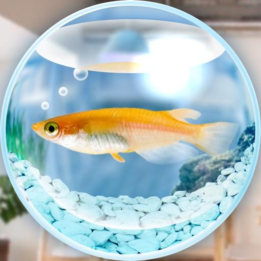 Killifish Aquarium Free iOS App