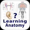 Learning Anatomy Quiz