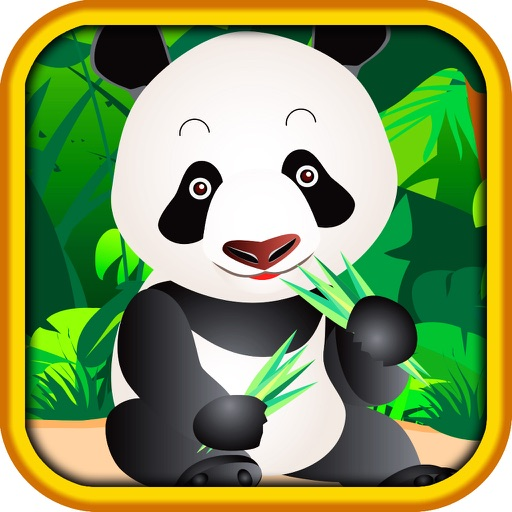 AAA Pop & Win Lucky Rich Panda Hi-Lo (High-Low) Game Blitz Casino Blast Free iOS App