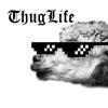 暴徒生活 - thug life 暴徒生活视频编辑器 朋友圈超火爆 小视频制作 抖音 短视频 咔叽