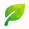 Green - next generation VPN