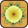 中国黄秋葵