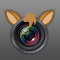 Camera HD for baby icon