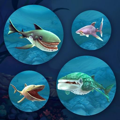 Tank diep hungry warrior shark game av tien vo for Fish io games
