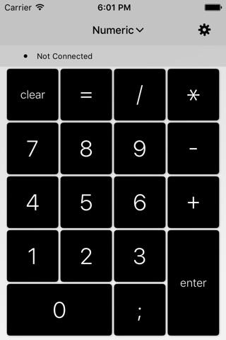 NumPad - Numeric Keypad screenshot 1