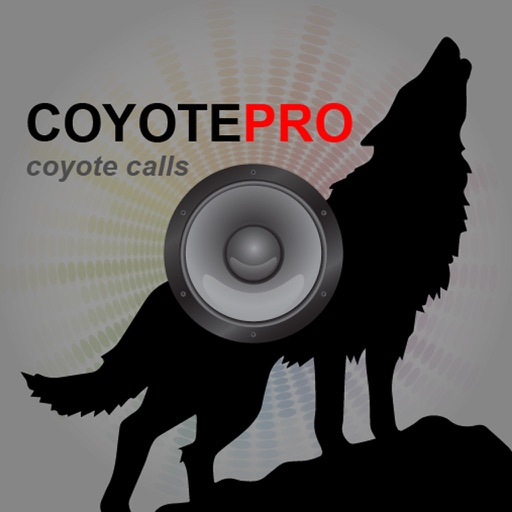 Coyote Calling with Free MP3 Sounds