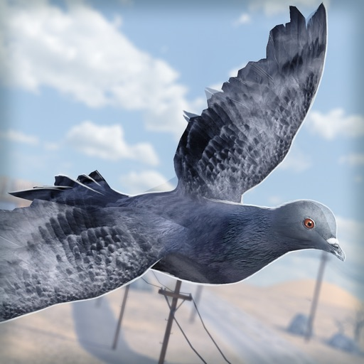 Bird Survival | Wing Sky Fly Tiny Simulator Game For Pros Icon