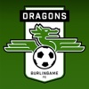 Dragons Supporters