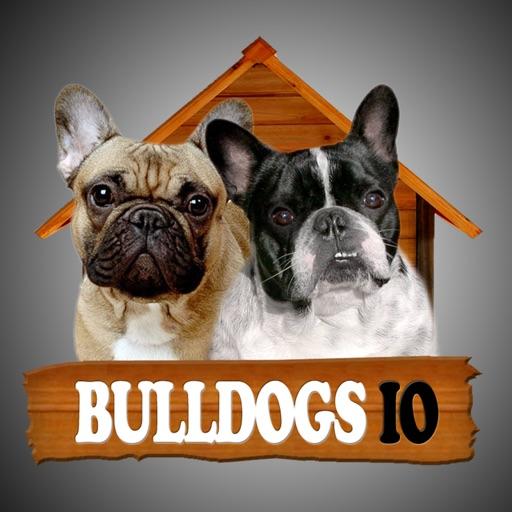 Bulldogs IO iOS App