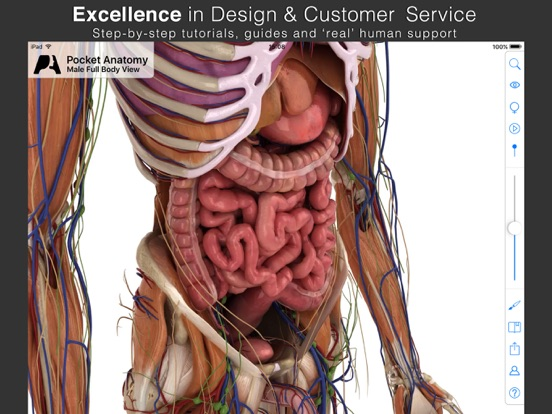 pocket anatomy - interactive 3d human anatomy and physiology. on, Human Body