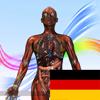 Anatomie & Physiologie Animationen