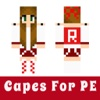 Cape Skins For Minecraft Game - Best New Skin Collection