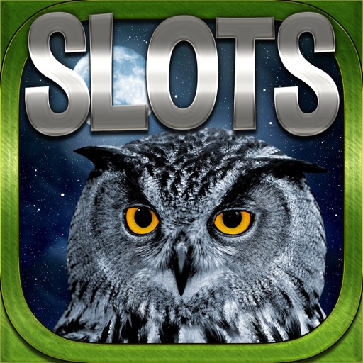 Another Slots Owl Slots FREE Slots Game iOS App